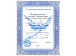 Тольяттинские нотариусы помогли взлететь «Серебряной птице»